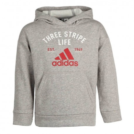 Sudadera Adidas Graphic Kids CE4336