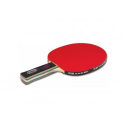 Pala ping pong NB Select Team 500