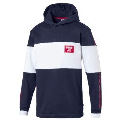 Sudadera Puma Rebel Block 852400 06