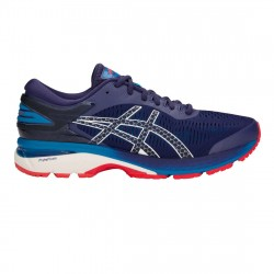 Zapatillas Asics Gel-Kayano 25 1011A019 400
