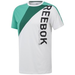Camiseta Reebok Ost Blocked EC0993