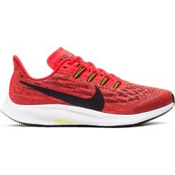Zapatilla Nike Pegasus 36 AR4149 619