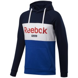 Sudadera Reebok TE Linear Logo Logo OTH Hoodie FT8019