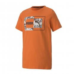 Camiseta Puma Alpha Graphic Tee B 581268 28