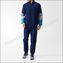 Chandal Adidas Iconic WV AJ6290